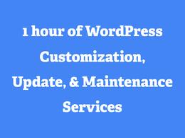 Get WordPress Support, WordPress Customization, WordPress Maintenance For 1 Hour