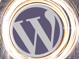 Provide 1 hour Wordpress updates / design / maintenance / tweaks