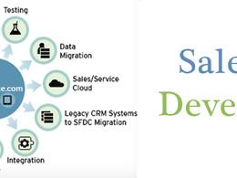 Do standard or custom development in Salesforce