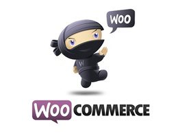 Upload 50 products to your WooCommerce website
