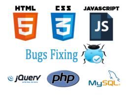 Fix Any Wordpress Website Issue/Problem/help CSS,HTML,Javascript