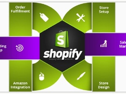 Build a complete shopify website or shopify theme, shopify seo