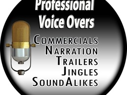 Record a 1st class voice over for explainer, whiteboard and/or VSL - up to 1000 words