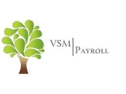 VSM Payroll Limited's header
