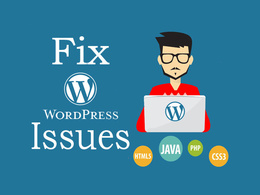 Fix any issue on your wordpress website