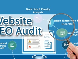I will audit and Optimize your full site to make it SEO friendly