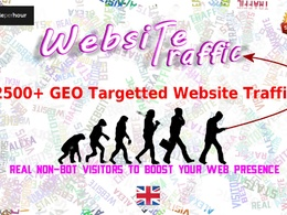 Send 5000 real GEO targetted Adsense Safe traffic to website