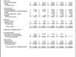 Create GAAP quality pro forma financial statement