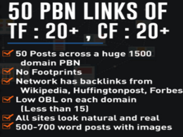 Provide 50 PBNs Backlinks with 50 Copyscape Passed Articles