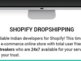 Create a Perfect drop shipping shopify BigCommerece or Shopify Store