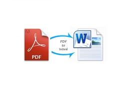 Convert pdf file into word document.