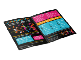 Design a double-sided sales/promotion/information flyer for your business