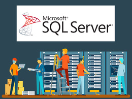 Expert advice on MS SQL Server & T-SQL