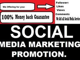 Provide 1000 LinkedIn Follower or 200+ Mixcloud Follower