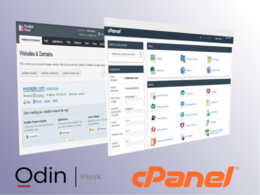 Install and configure WHM/cPanel or Plesk on your VPS or dedicated server