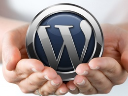 Support 1 hour WordPress maintenance, theme customization, issue fix