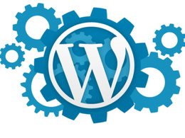 Provide 30 mins of maintenance/ update/ revisions/ fixes/ rework to WordPress website