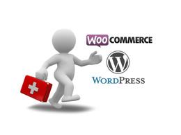 Fix any WordPress / Woocommerce  issues