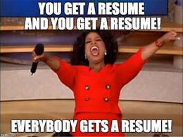 Provide custom resume services