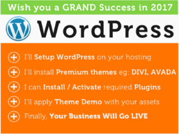 Install WordPress + Setup Premium Theme with Demo Content + Install Plugins