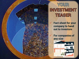 Prepare a branded investment teaser to present to investors (3 pages)
