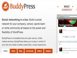 Fix buddypress issue and customization