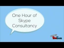 Provide One Hour's eBay Advice, Help or training through Skype