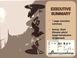 Write an executive summary to approach investors