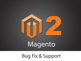 Fix anytype of bug or issue on Magento2