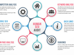 Give you a human SEO audit of your website, onsite & offsite