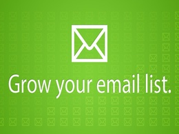 Provide you targeted email list as per your niche