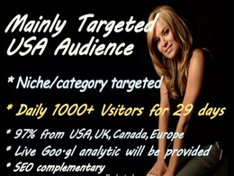 Provide niche and USA Targeted real Traffic, Visitors