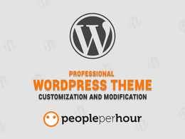 1 Hours Professional WordPress Theme Customization Service