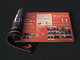 Design and layout your company brochure
