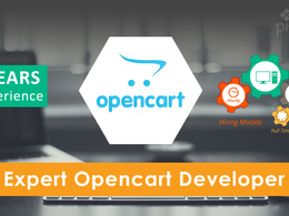 Work for 1 Hr on any Opencart related modification