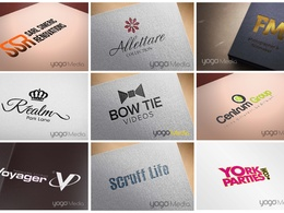 Provide a professional logo design service