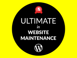Perform 60 minutes of maintenance, update, fixes on your WordPress website