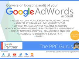 Produce a Conversion Boosting Audit of your Google Adwords