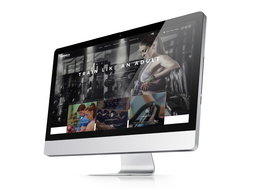 Design and develop responsive e-commerce website