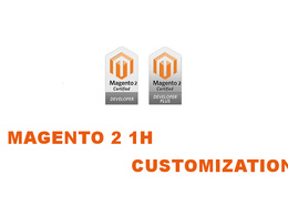 Provide 1 hour of consultation/updates/customization to your magento 2 (VAT Inc)