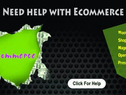 Provide one hour of WooCommerce support, fixes, customization