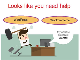 Provide 1 hour of updates, fixes, customization to your wordpress based website