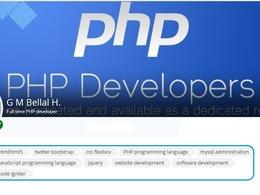 Develop Website/Web Application/Software Development(PHP,MySQL,Codeigniter)