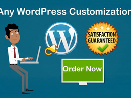Do all Sort Of Customization In Your Wordpress Site