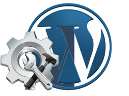 Do 1 hour of customizations / fixes / revisions in Wordpress