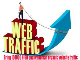 Provide 100k google and adsense Safe traffic (Real Visitors only -no Bot)