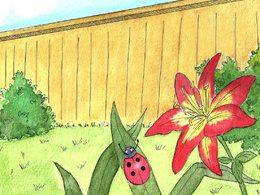 Illustrate 3 pages of your children's book