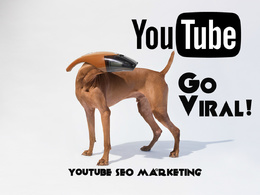 Rank your Youtube Video #1 with SEO, Real Views, 10 PR9 Backlinks