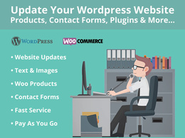 Update your WordPress Website with text, images & more... (30 Mins of site updates)