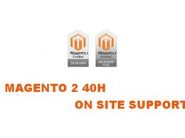 Magento 2 20h onsite work for UK VAT Inc